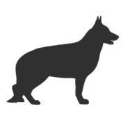 Hundehanf