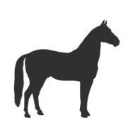 Pferdehanf